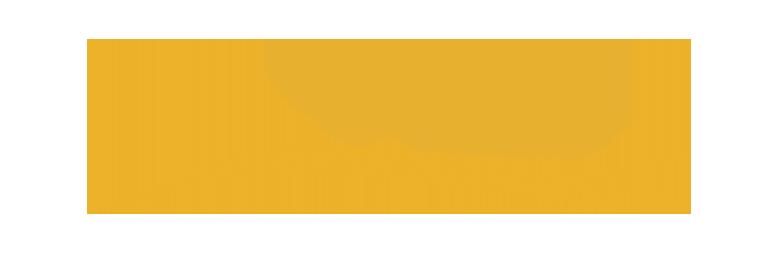 Logo til Newline